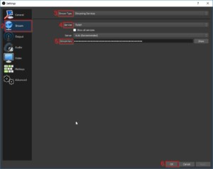 My Twitch Stream Key OBS Streaming Software Settings 2
